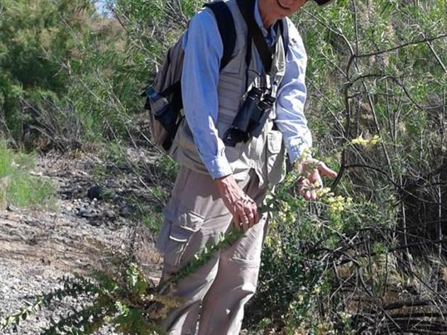 Let the Rivers Do the Talking – An AZ WRAN Volunteer Highlight