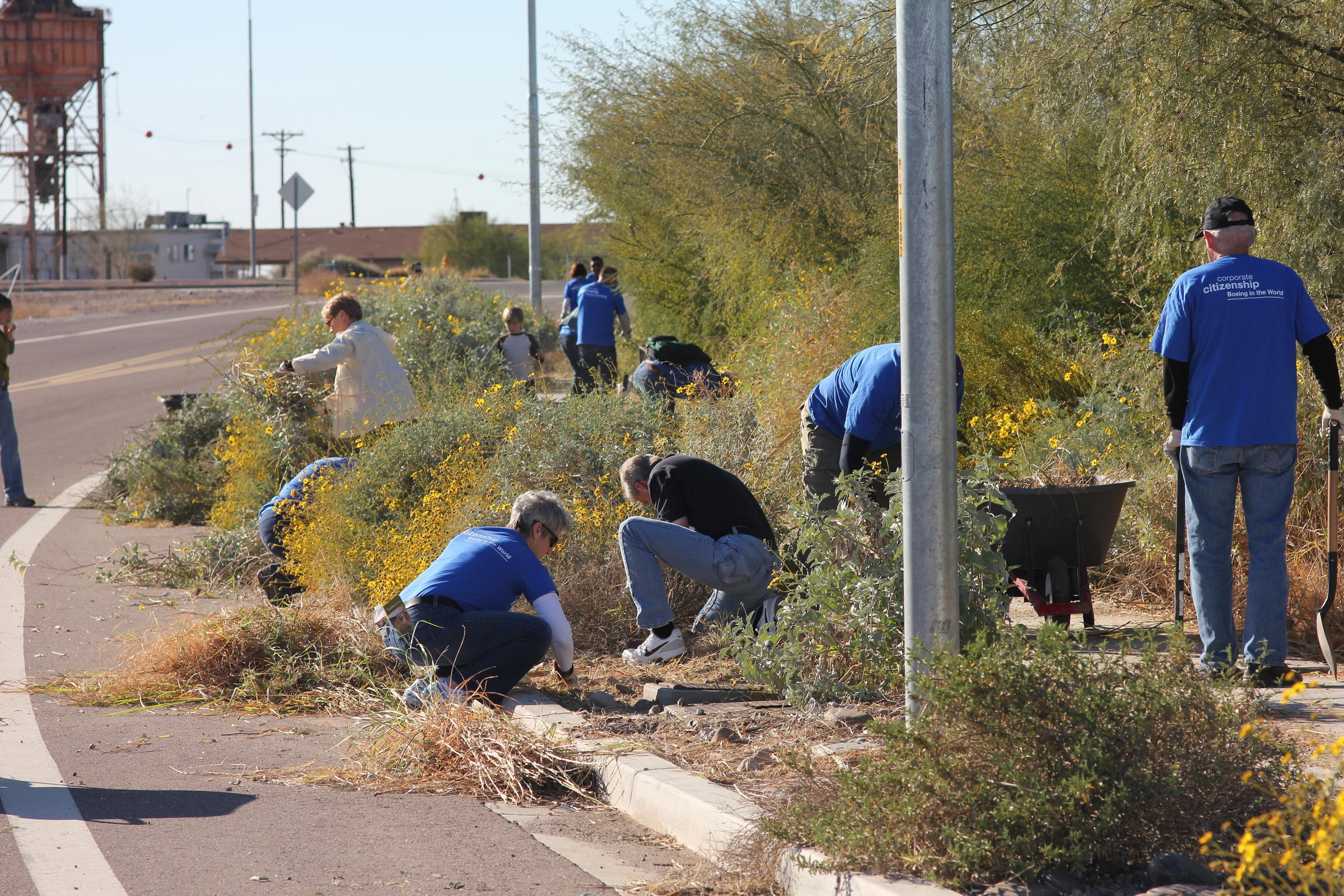 A group of mixed-age volunteers from Boeing's Corporate Citizenship program use hand pruners and wheelbarrows to remove invasive grasses and other weeds from the Rio Salado Audubon Center's parking lot border.